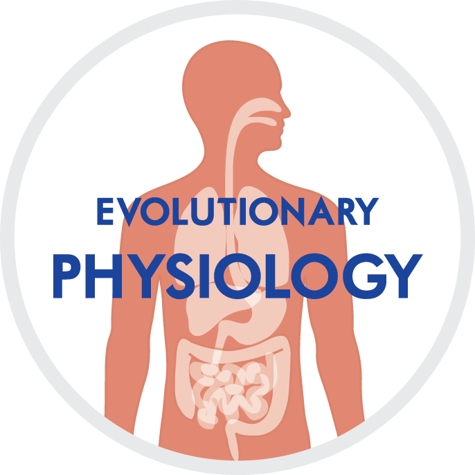 Image Evolutionary Physiology